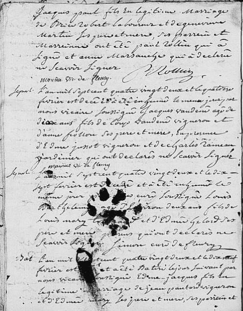 pattes-chat_89-fleurylavallee_bms-1773-1792